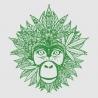 Green Monkey Drinks